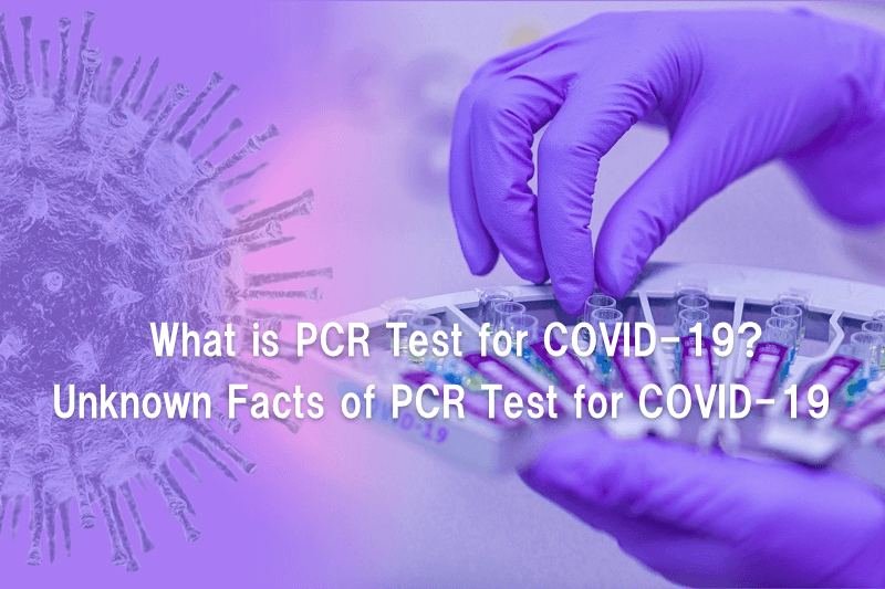 What is PCR?